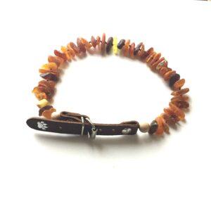 Amber Dog Collars by Toni